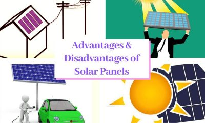 SolarPanels,Home Solar Panels Advantages & Disadvantages Are Safe In 2020